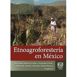 Etnoagroforestería en México